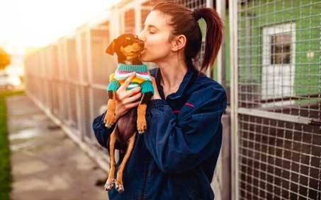 Operation Kindness Newsroom - How to support local animal welfare groups during COVID-19 | North Texas No-Kill Animal Shelter