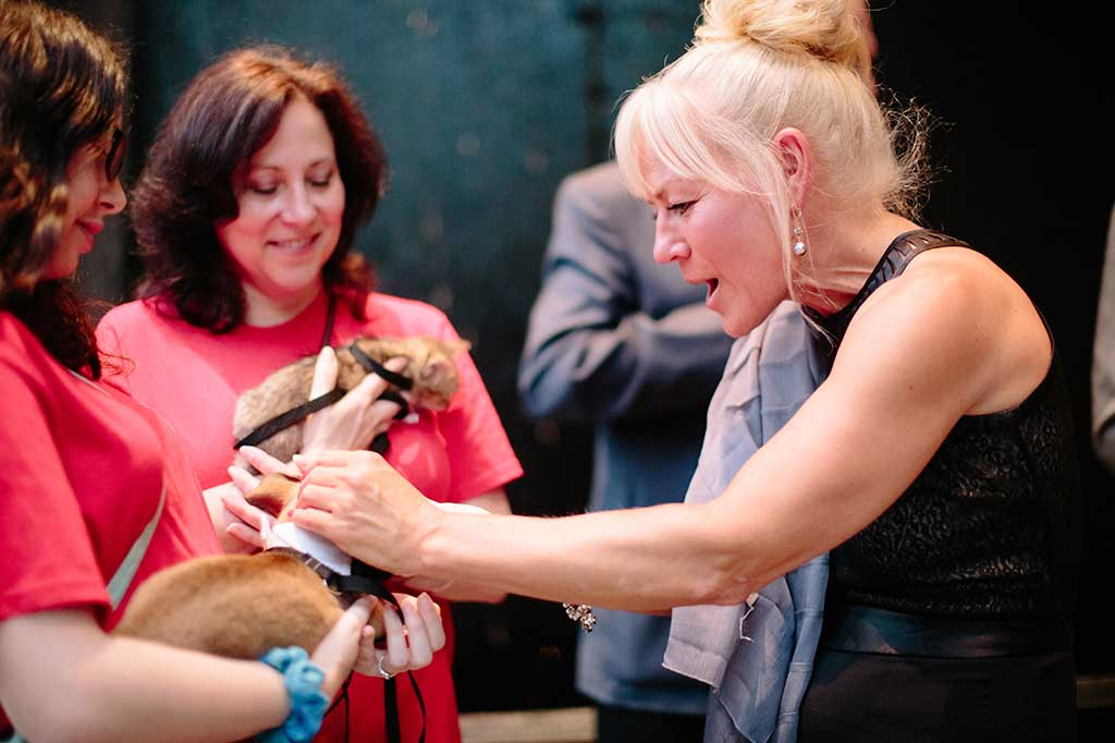 Attendees and adoptable animals at Operation Kindness' fundraising event the Hope Gala supporting homeless animal | No-Kill Animal Shelter and Animal Adoptions