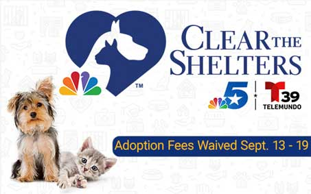 Newsroom Feature Image | Operation Kindness North Texas No-Kill Animal Shelter