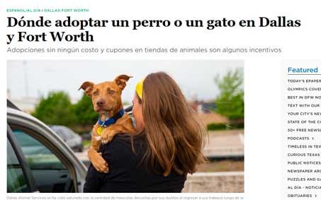 Newsroom | Dónde adoptar un perro o un gato en Dallas y Fort Worth | Operation Kindness North Texas No-Kill Animal Shelter