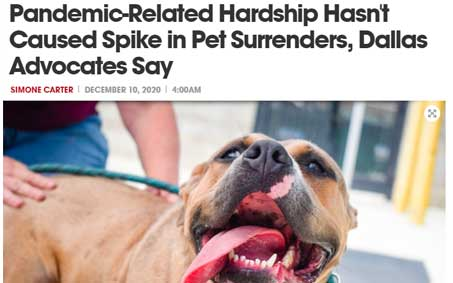 Operation Kindness Newsroom - Pandemic-Related Hardship Hasn't Caused Spike in Pet Surrenders, Dallas Advocates Say | North Texas No-Kill Animal Shelter