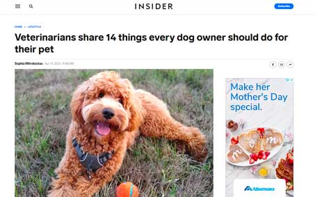 Newsroom | Veterinarians share 14 things every dog owner should do for their pet | Operation Kindness North Texas No-Kill Animal Shelter