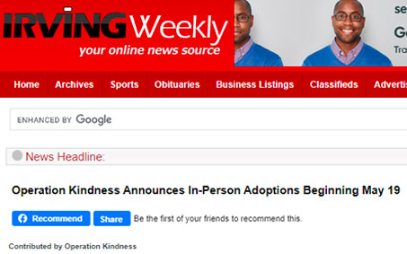 Newsroom | Irving Weekly Operation Kindness Announces In-Person Adoption Appointments | Operation Kindness North Texas No-Kill Animal Shelter