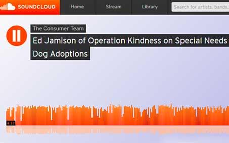 Newsroom | 1080 KRLD The Consumer Team Ed Jamison Special Needs Dogs | Operation Kindness North Texas No-Kill Animal Shelter
