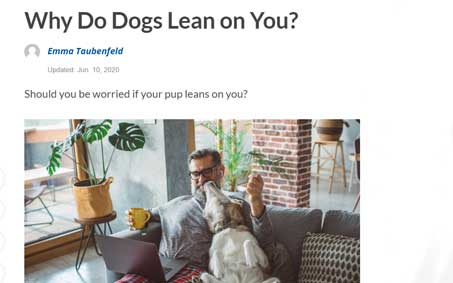 Operation Kindness Newsroom - Why Do Dogs Lean on You? | North Texas No-Kill Animal Shelter