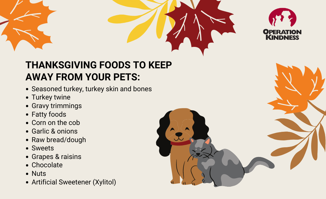 Operation Kindness Blog | North Texas No-Kill Animal Shelter | Thanksgiving Pet Safety Tips